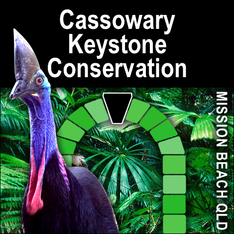Environmental Protection Act in brief – in relation to protection of endangered cassowary populations